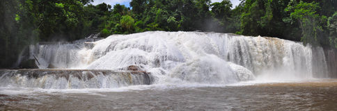 Agua Azul Waterfall, Mexico. Agua Azul Waterfall near Palenque, Mexico royalty free stock photos