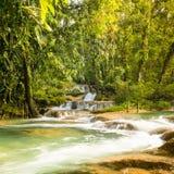 Agua Azul Mexico. Agua Azul waterfall near Palenque in Chiapas, Mexico Royalty Free Stock Photo