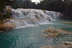 Agua Azul waterfall, Yucatan  Peninsula, Mexico. Stock Image