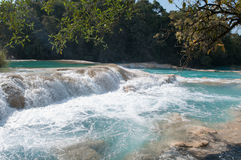 Agua Azul waterfalls, Chiapas, Mexico Stock Images