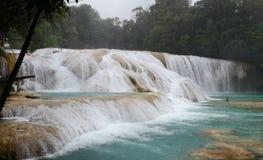 Agua Azul Waterfalls. Image of Agua Azul Blue Water Waterfalls at Chiapas Mexico stock images