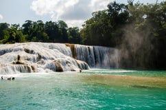 Agua azul waterfalls Stock Image