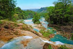 Agua Azul waterfalls in Mexico. Beautiful Cascadas de Agua Azul, waterfalls in Chiapas, Mexico - view from above royalty free stock photography