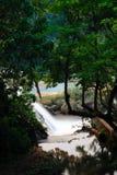 Agua Azul Waterfalls Stock Photos