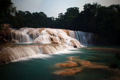 Agua Azul Waterfalls Royalty Free Stock Image
