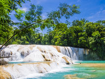 Agua Azul waterfalls in the rainforest of Chiapas, Mexico. Agua Azul waterfalls in the lush rainforest of Chiapas, Mexico stock photo