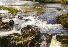 Agua blanca Foto de archivo