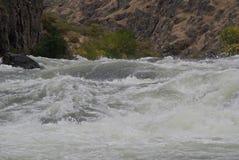 Agua blanca del río Snake Foto de archivo