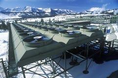 Agua caliente a la energía eléctrica en la central eléctrica geotérmica en Gigantesco-pacífico, CA Foto de archivo