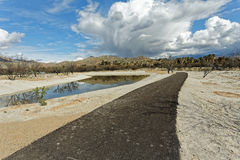 Agua Caliente Path. The Agua Caliente Park path in Tucson Arizona Royalty Free Stock Image