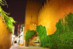 agua Callejon Del Noc Sevilla Obraz Royalty Free