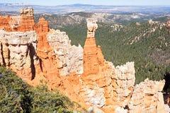Agua Canyon Royalty Free Stock Image