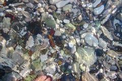 Agua clara foto de archivo
