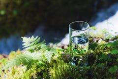 Agua clara en un vidrio claro contra un fondo del musgo verde con un río de la montaña en el fondo Alimento sano Foto de archivo