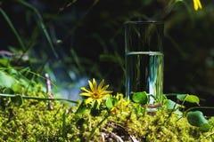 Agua clara en un vidrio claro contra un fondo del musgo verde con un río de la montaña en el fondo Alimento sano Imagenes de archivo