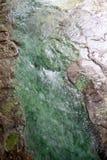 Agua clara hermosa en un suelo del verde azul Foto de archivo libre de regalías
