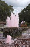 Agua coloreada rosa que atraviesa una fuente Fotos de archivo libres de regalías
