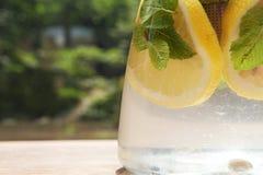 Agua con la fruta cítrica y la menta Imagen de archivo