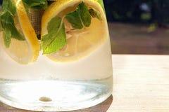 Agua con la fruta cítrica y la menta Imagen de archivo libre de regalías