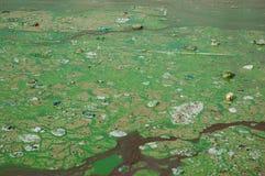 Agua contaminada Imagen de archivo libre de regalías
