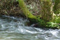 Agua corriente en corriente imágenes de archivo libres de regalías