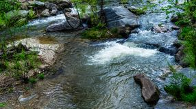 Agua corriente en el bosque foto de archivo