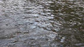 Agua corriente interesante del río de Strumeshnitsa almacen de metraje de vídeo