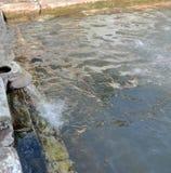Agua corriente maravillosa en Ambaji, Gujarat, la India imagen de archivo libre de regalías