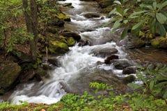 Agua corriente sobre los cantos rodados en una cala de la montaña imagen de archivo libre de regalías