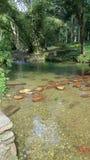 Agua cristalina del río que fluye Imágenes de archivo libres de regalías