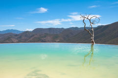 Agua d'EL de Hierve, source thermale, Oaxaca (Mexique) Images stock