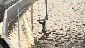 Agua de aguas residuales de torneado del líquido filtrado del colono en la instalación de tratamiento Reciclaje del agua metrajes