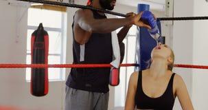 Agua de alimentación masculina del instructor al boxeador de sexo femenino en el ring de boxeo 4k metrajes