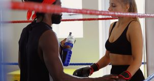 Agua de alimentación masculina del instructor al boxeador de sexo femenino en el ring de boxeo 4k almacen de metraje de vídeo