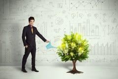 Agua de colada del hombre de negocios en árbol creciente de la bombilla Foto de archivo libre de regalías