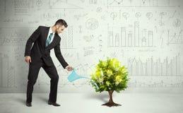 Agua de colada del hombre de negocios en árbol creciente de la bombilla Fotos de archivo libres de regalías
