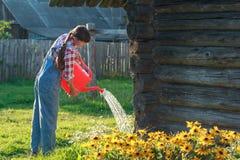Agua de colada del jardinero cuidadoso en cama del jardín de flores con la regadera plástica anaranjada foto de archivo libre de regalías