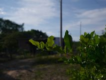 Agua de Dios est une municipalité et une ville de la Colombie i images libres de droits