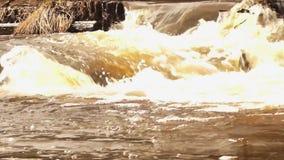 Agua de inundación del río que rabia con espuma almacen de video