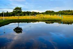 Agua de la calma del humedal de la reserva de naturaleza foto de archivo
