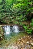 Agua de la cascada en los bosques de la montaña Imagen de archivo