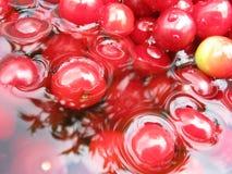 agua de la cereza Imágenes de archivo libres de regalías