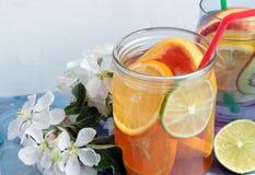 Agua de la fruta del Detox Imagen de archivo