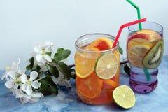 Agua de la fruta del Detox Foto de archivo