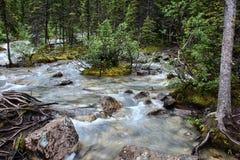 Agua de la montaña que remolina Foto de archivo libre de regalías