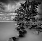 Agua de la roca Fotos de archivo