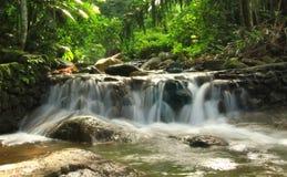 Agua de la vida Foto de archivo libre de regalías