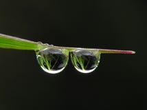 Agua de las gotas Foto de archivo libre de regalías