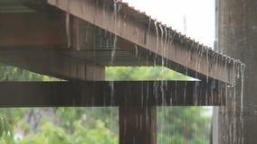 Agua de lluvia almacen de video