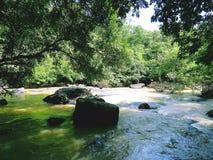 Agua de lluvia de la selva tropical, Tat Ton Waterfall, provincia de Chaiyaphum Fotografía de archivo libre de regalías